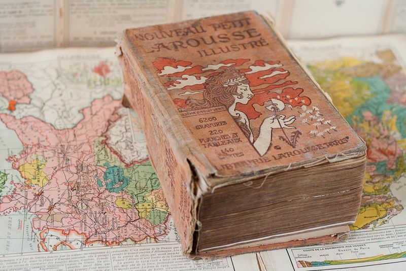 Antique French Petit Larousse Dictionary at Callaloo Soup Vintage-1
