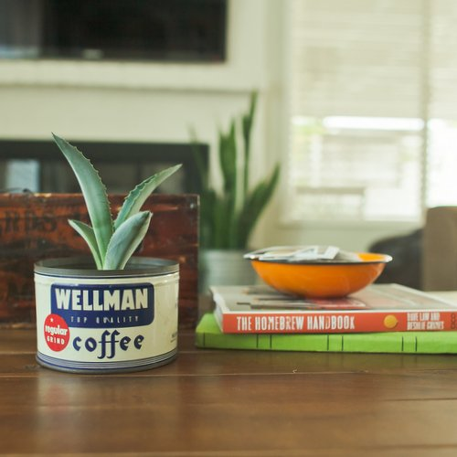 Succulent in vintage tin - Saturday Morning Vintage Home Tour